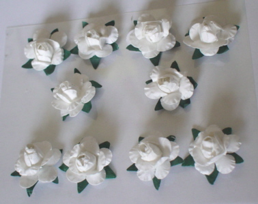 10 White Rose Heads