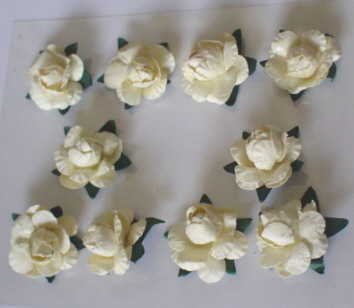 10 Rose Heads Cream