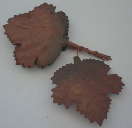 10 Brown Mulberry Leaves