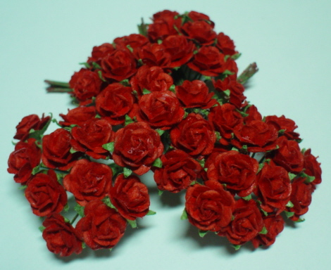 50 Roses Open  - Red