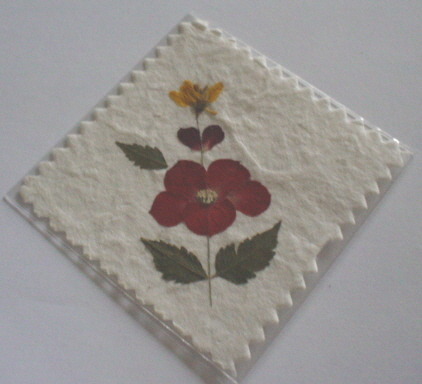 Pressed Dried Flower Topper 4