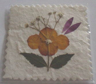 Pressed Dried Flower Topper 5